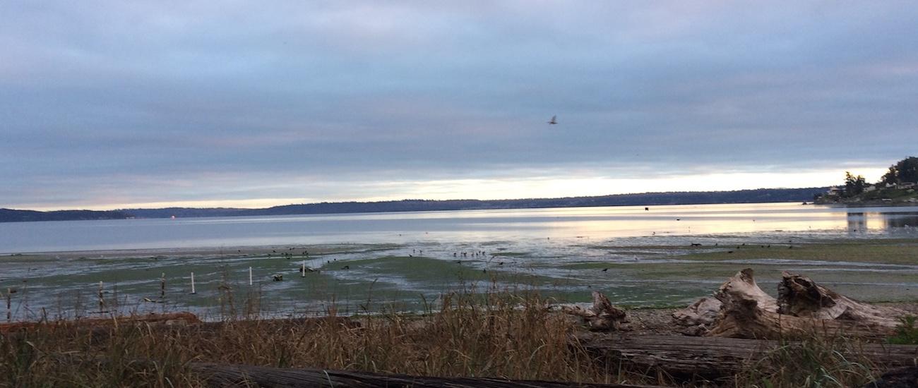 CM West :: Retreat at Puget Sound